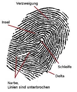 Besonderheiten eines Fingerabdrucks